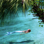 mermaid melissa blue water spring beautiful palm tree image