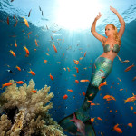 mermaid-melissa-ocean-image-press-web