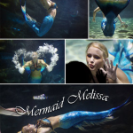 mermaid ripleys aquarium melissa logo lead performer