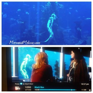 abc black box series mermaid melissa