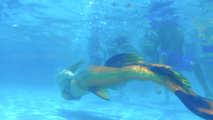 swimming real mermaid underwater orange splash tail