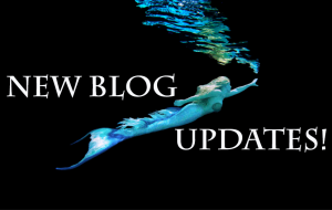 Mermaid blog updates mermaid melissa