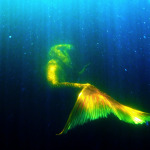 Golden tailed Mermaid Melissa footage - glistening siren sighting underwater
