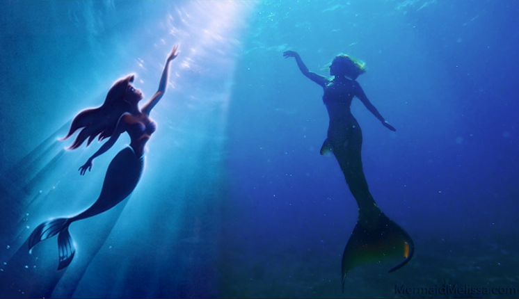 Gallery For > Real Life Ariel Mermaid Swimming