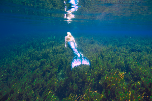 mermaid melissa florida springs silver springs