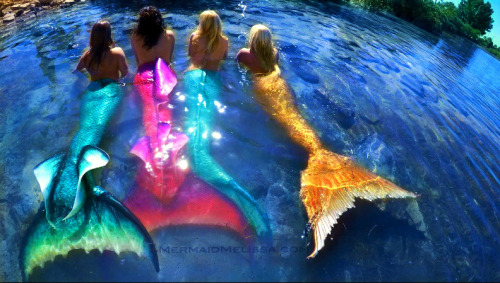 mermaid melissa mermaid performers mermaid tails mermaid troupe mermaid company