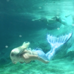 mermaid melissa mermaid tail blue mermaid swimming underwater