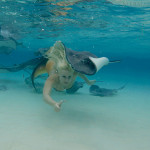 mermaid stingrays underwater cayman