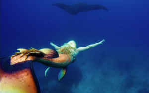 mermaid and manta mermaid melissa manta ray