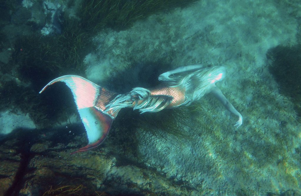copper tailed video mermaid melissa